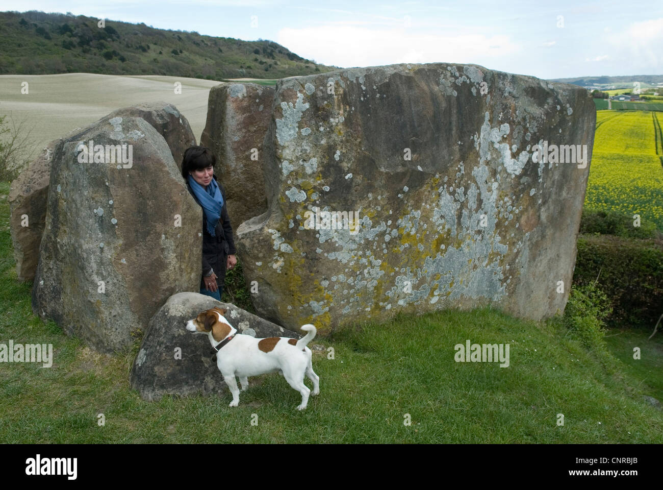 Pietra Coldrum Long Barrow Kent Downs Uk. HOMER SYKES Immagini Stock