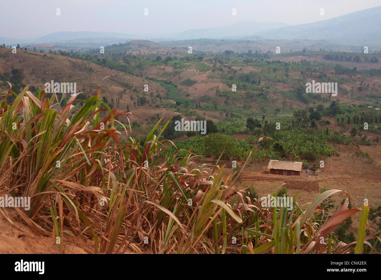 Casa di fango in piedi nella valle, Burundi, Karuzi, Karuzi Immagini Stock