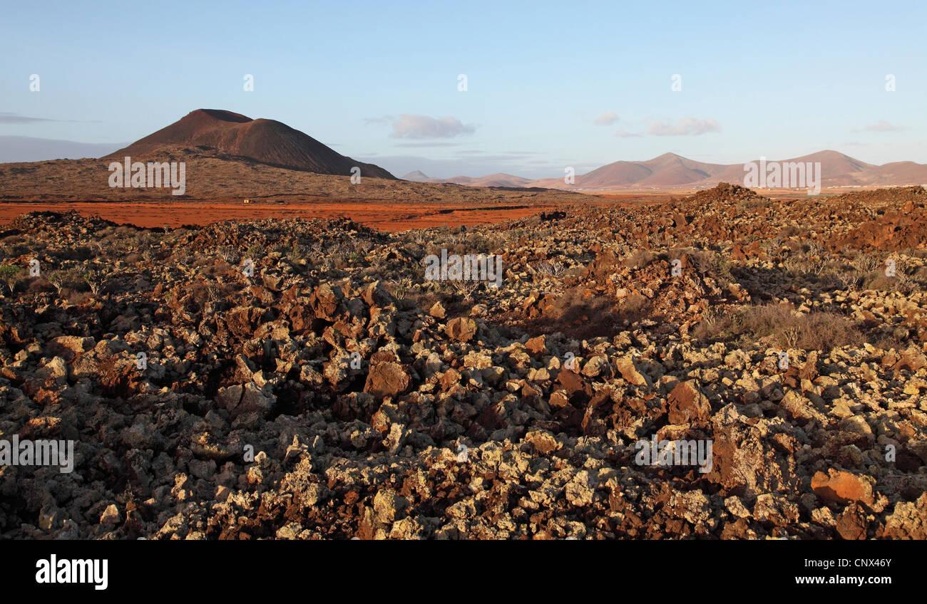 Deserto roccioso con le piante succulente, Isole Canarie Fuerteventura, Tiscamanita Immagini Stock