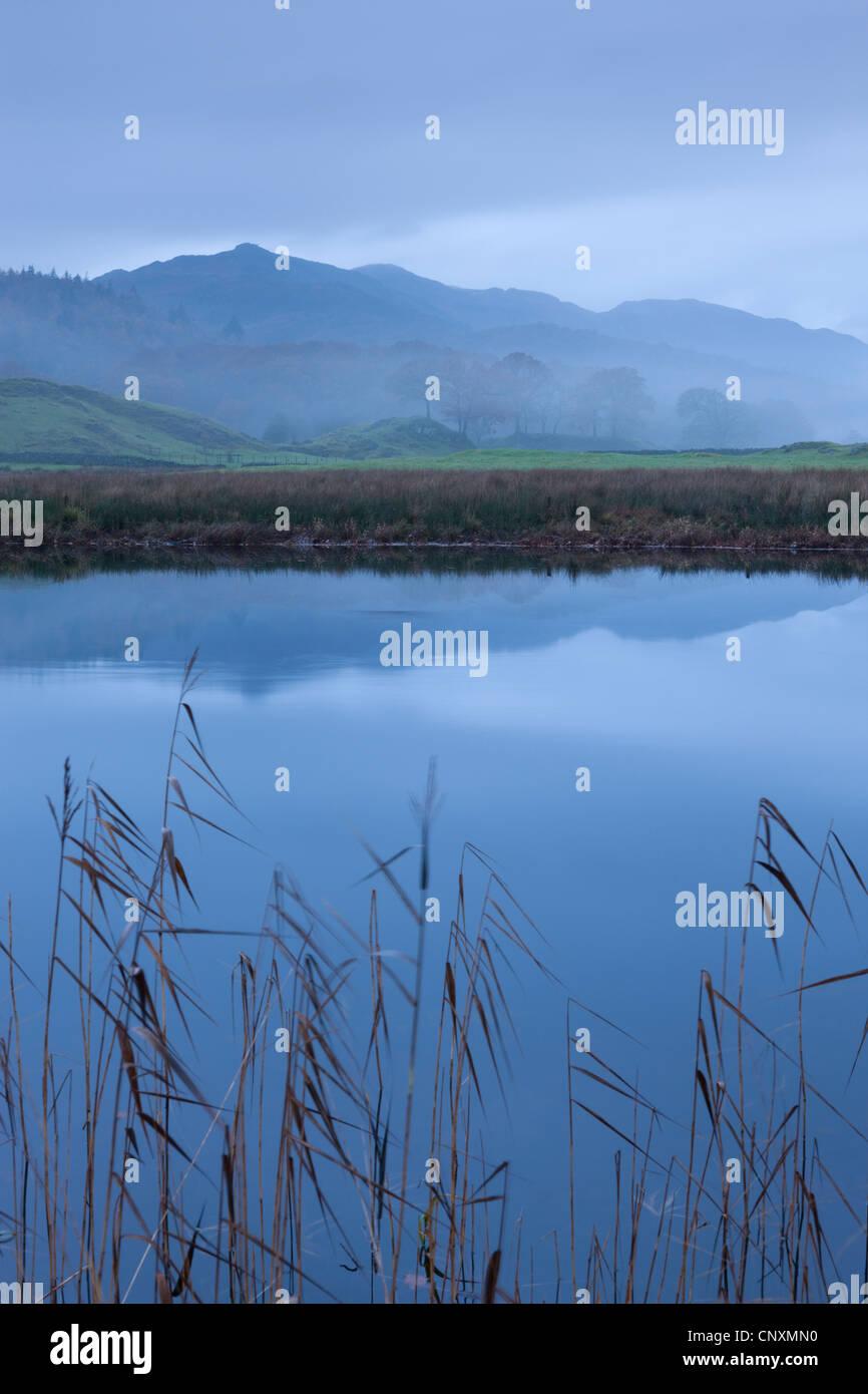 Foschia mattutina accanto al fiume Brathay, Lake District, Cumbria, Inghilterra. In autunno (novembre 2011). Immagini Stock