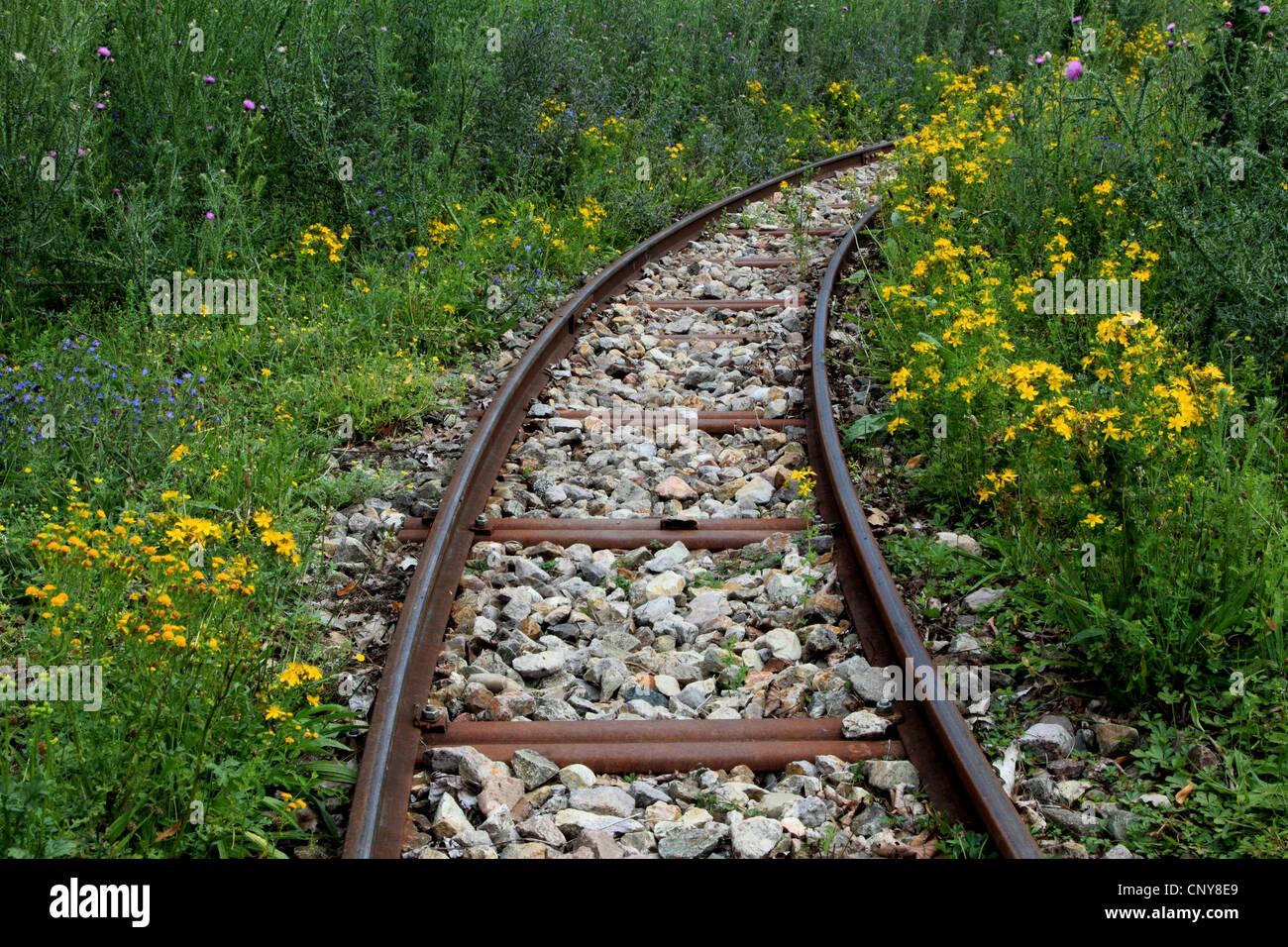 Via sovradimensionate, Germania Foto Stock