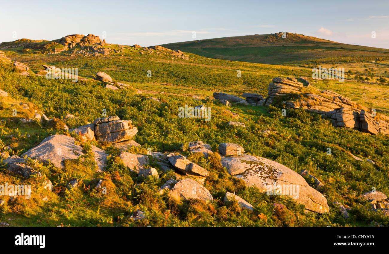 Splendida serata bassa il sole illumina le lande rocciose che conduce alla sella di Tor e Rippon Tor, Dartmoor Immagini Stock
