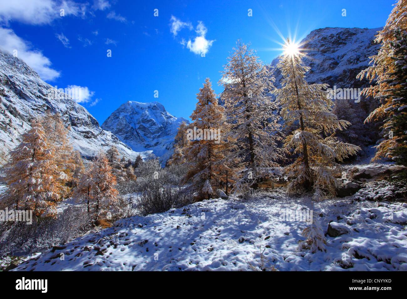 Snowy paesaggio di montagna con il Monte Collon, Arolla valley, Svizzera Vallese Immagini Stock
