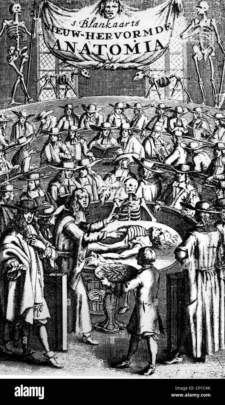 """Medicina, anatomia, anatomico lezione, incisione su rame, titolo di """"Nieuw-Hervormde Anatomia' da Stephan Immagini Stock"""