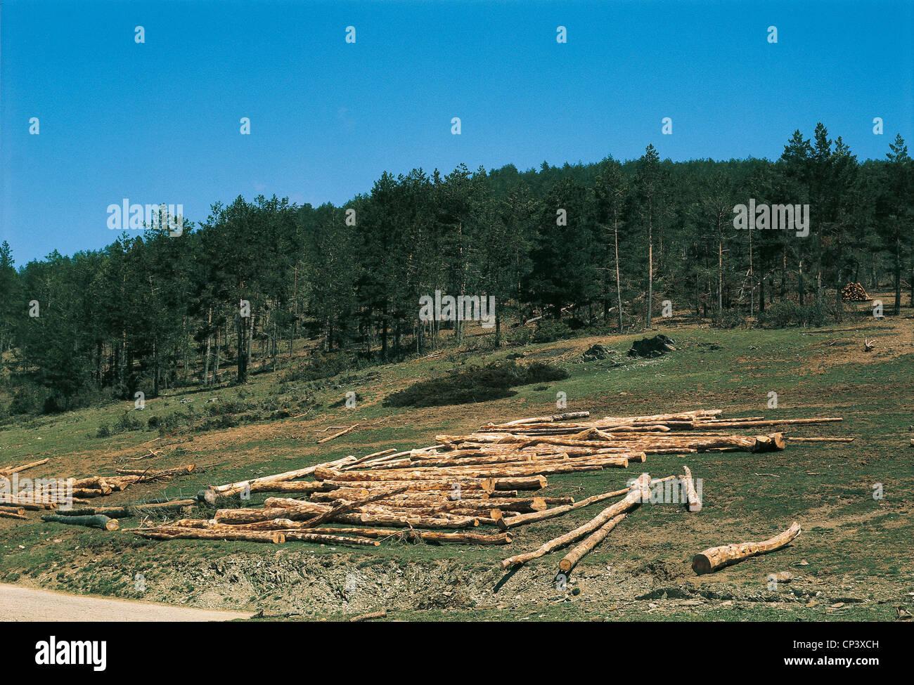 Spagna Aragona Sierra de Albarracin la deforestazione Immagini Stock