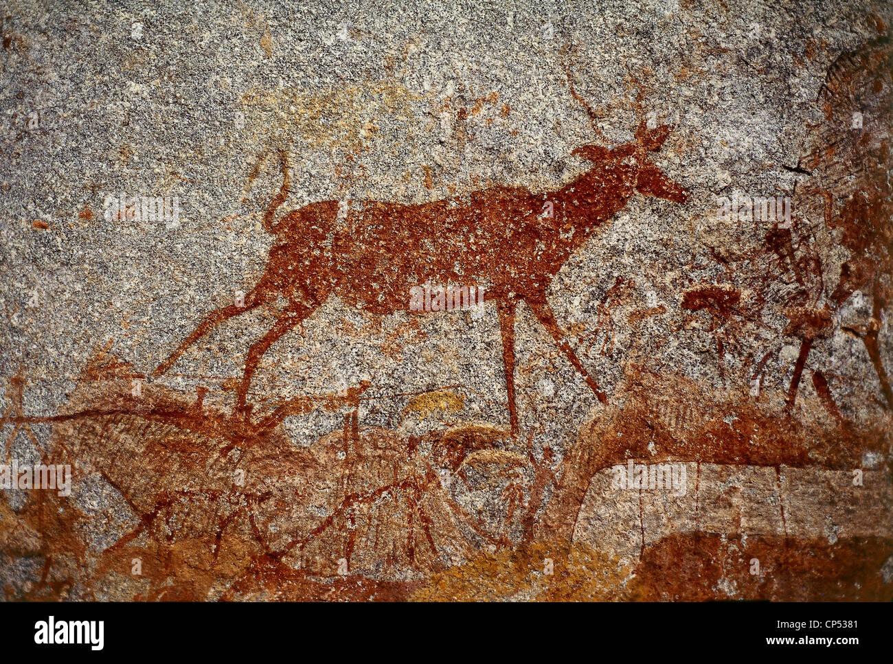 ZIMBABWE Matobo Nat.Park NSWATUGI VERNICE grotta di roccia Foto Stock