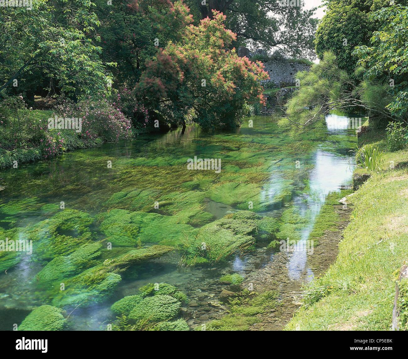 Lazio cisterna di latina lt giardini di ninfa oasi wwf il fiume ninfa attraverso la - I giardini di alice latina lt ...