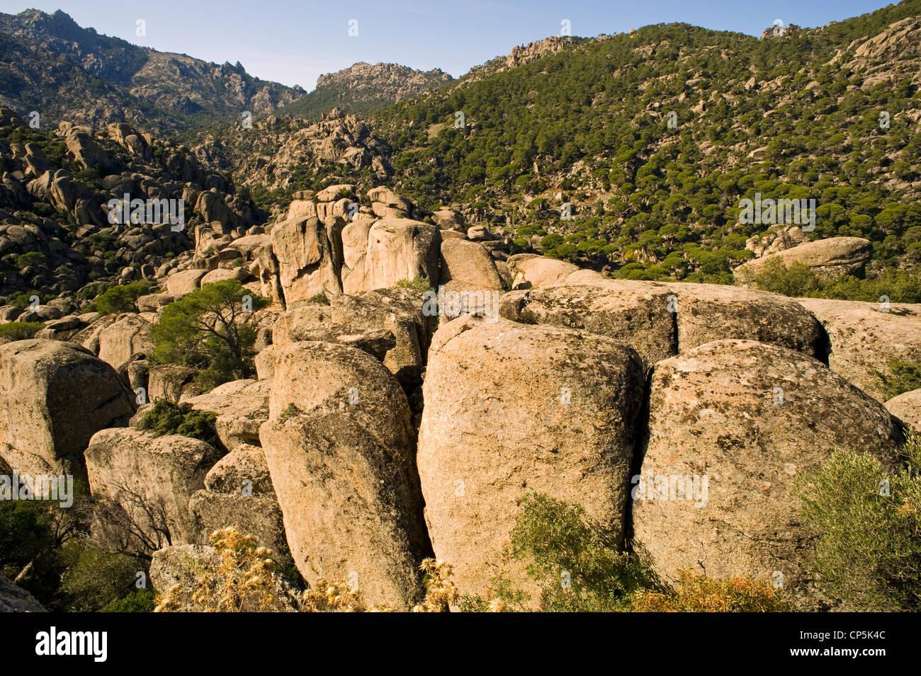 Paesaggio roccioso e pietra foresta di pini di montagna Besparmak Turchia Immagini Stock