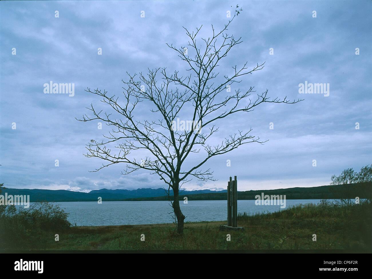 Giappone - Hokkaido. Quasi Onuma National Park, Lago Onuma Immagini Stock