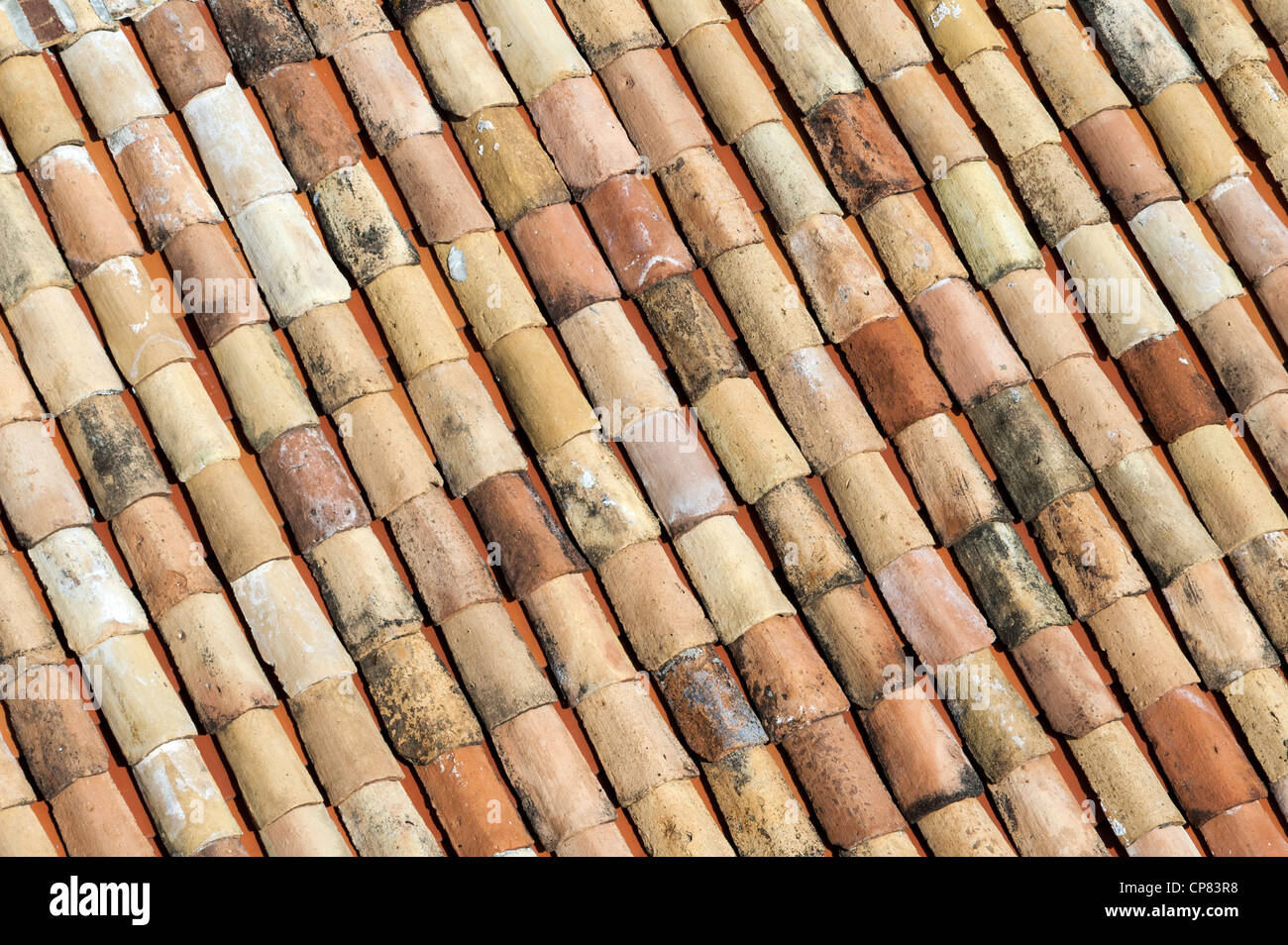 Pantile tetto di terracotta, Europa Immagini Stock