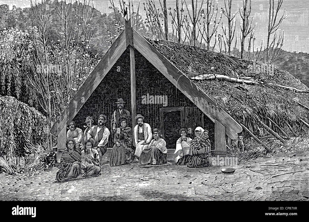 Capanna Maori, Nuova Zelanda, incisione storica del XIX secolo, Eine Hütte der Maori, Neuseeland, historischer Immagini Stock