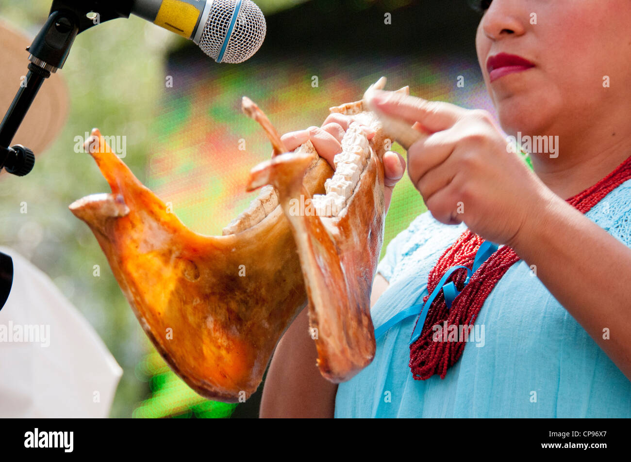 Musicista messicano utilizza horse's jawbone come strumento a percussione in concerto durante il Cinco de Mayo Immagini Stock