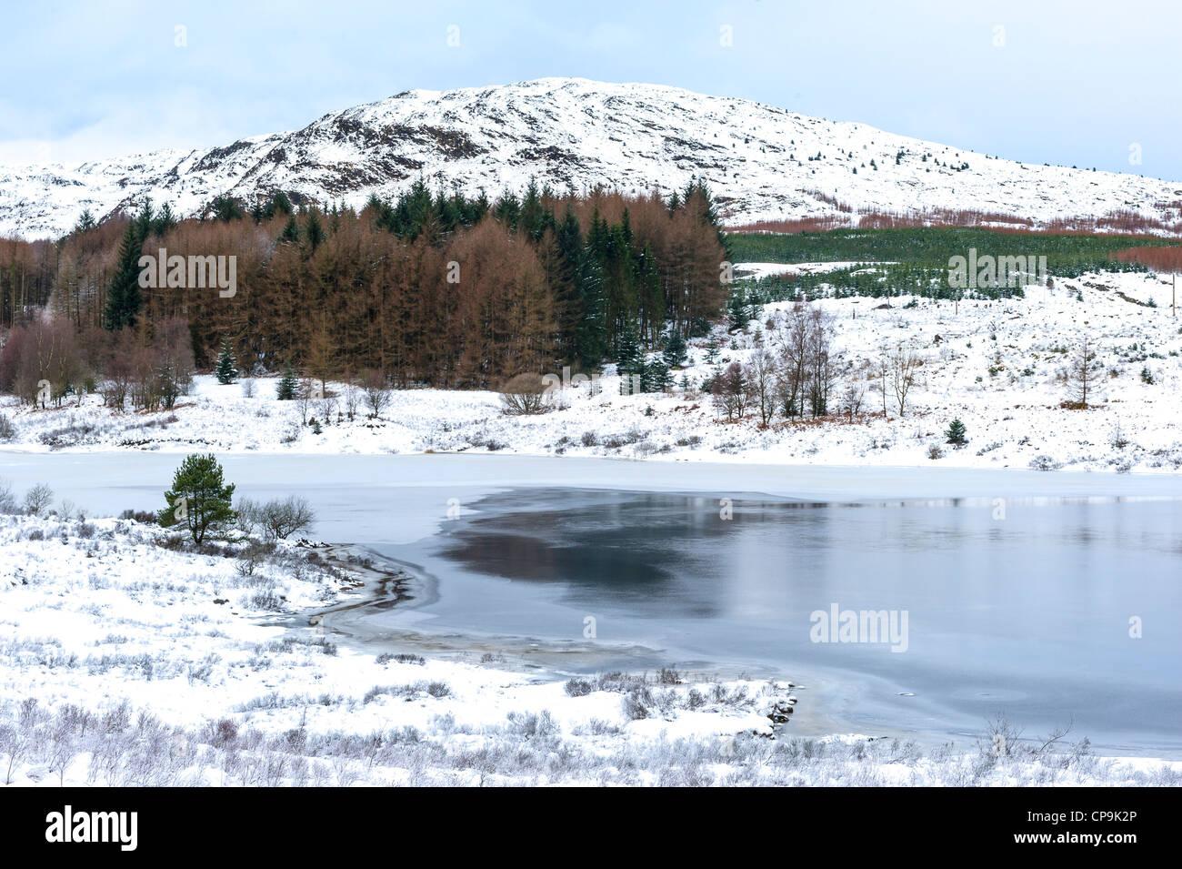Inverno sul Craignell, Galloway Forest Park, Galloway, Scotland, Regno Unito Immagini Stock