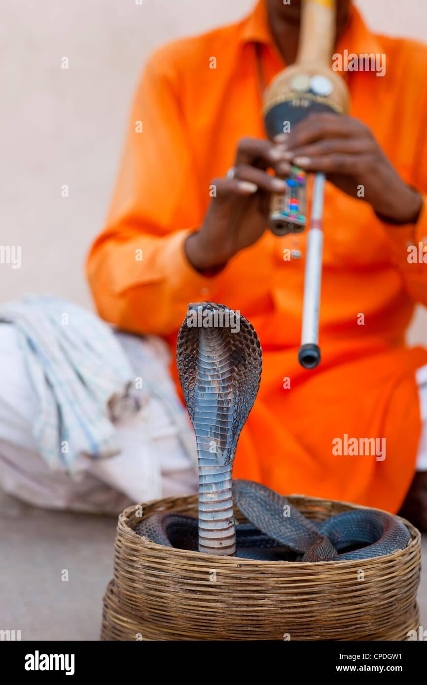 Cobra snake incantatore al di fuori del palazzo di città, Jaipur, Rajasthan, India, Asia Immagini Stock