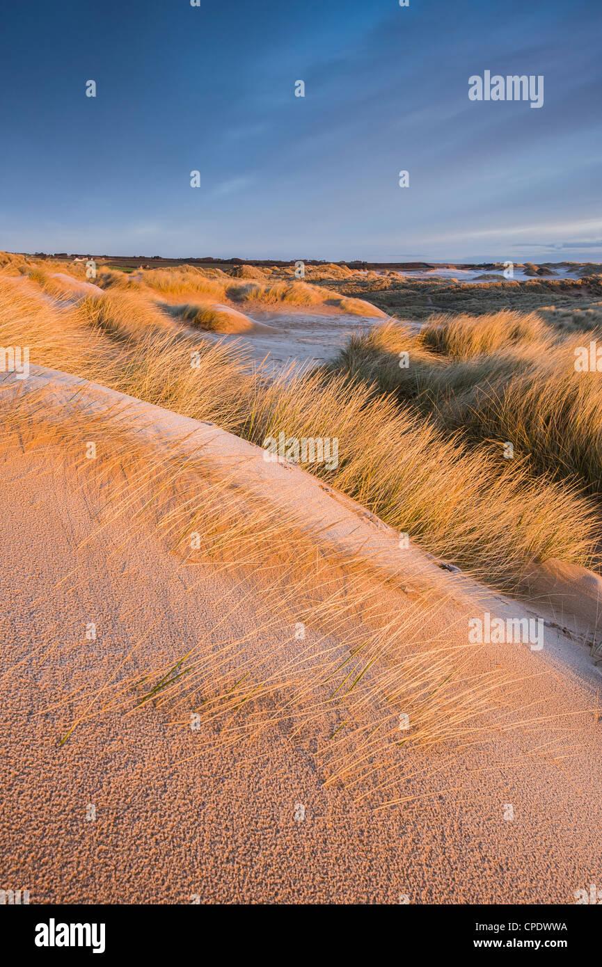 A Balmedie Beach a sunrise, Aberdeenshire, Scotland, Regno Unito Immagini Stock