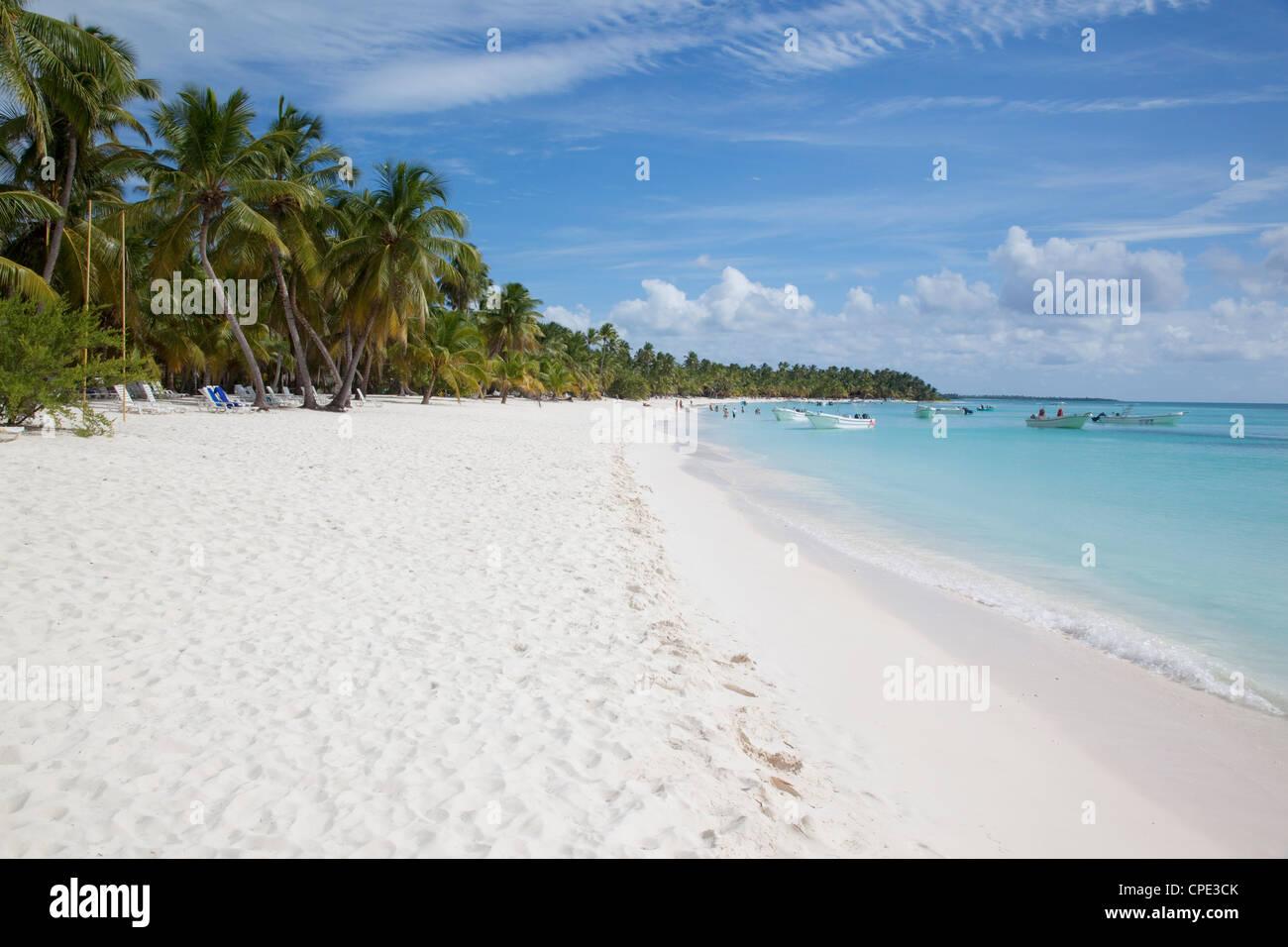Saona Island, Repubblica Dominicana, West Indies, dei Caraibi e America centrale Immagini Stock