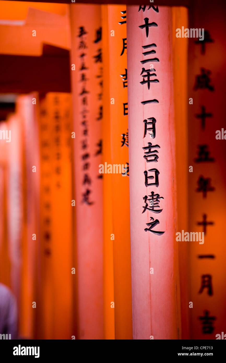 Vermiglio Torii Gates, Fushimi-Inari Taisha, Kyoto, Giappone, Asia Immagini Stock