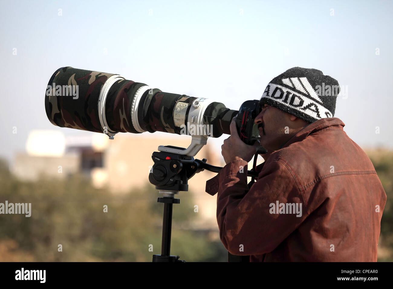 Wildlife Photographer Immagini Stock