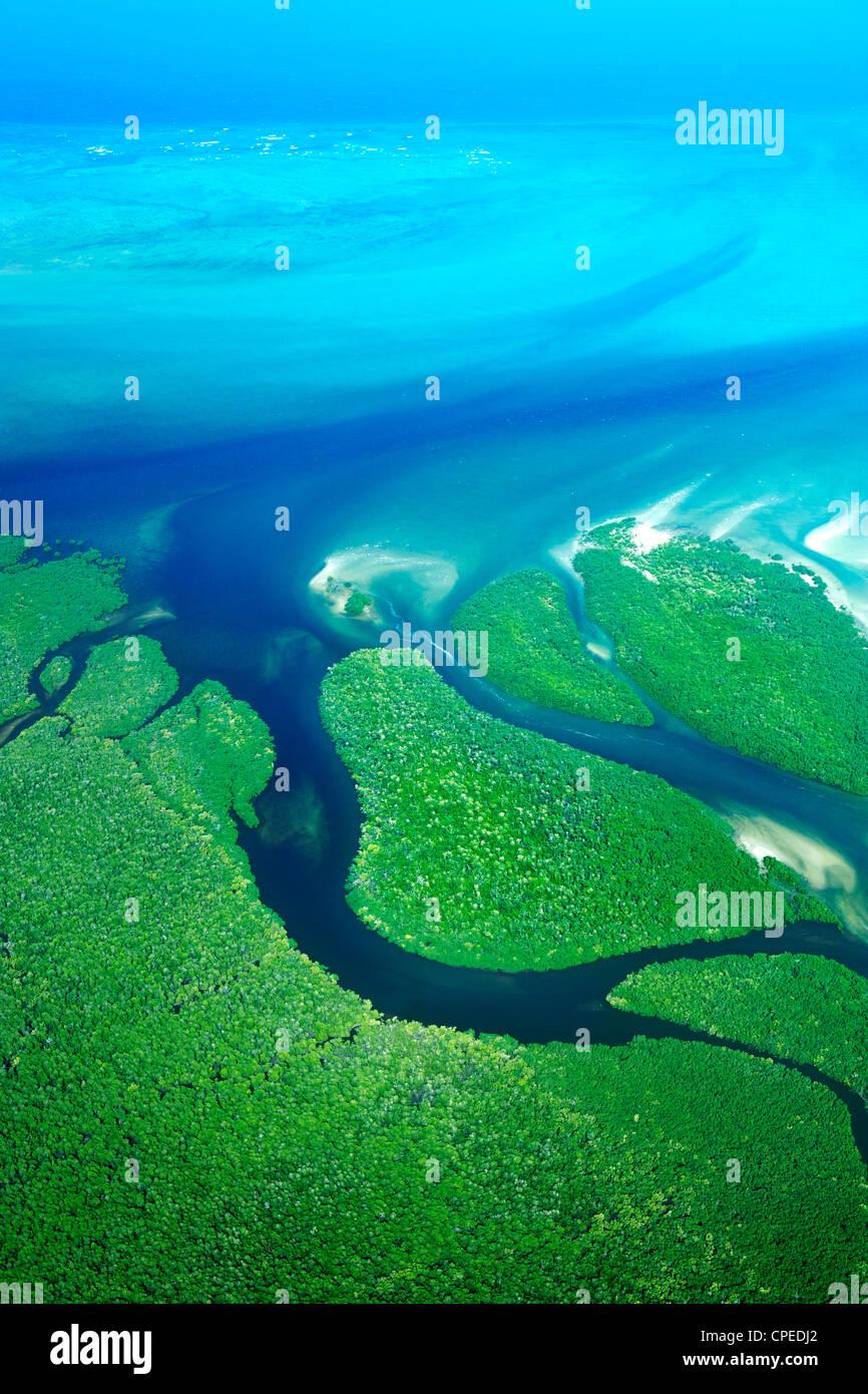 Mangrovie lungo la costa delle Quirimbas National Park in Mozambico. Foto Stock