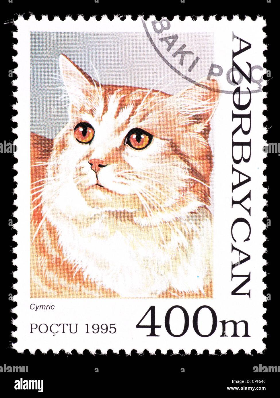 Francobollo da Azerbaigian raffigurante un gatto cymric. Immagini Stock