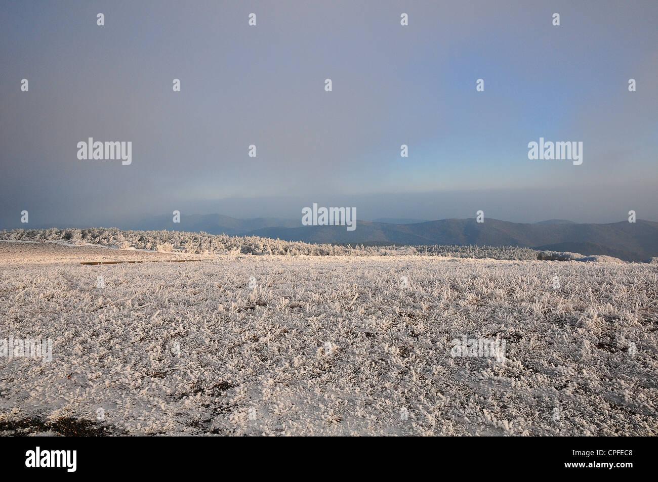Smerigliati neve e un pastello Sky Winter's pomeriggio al Pic de Nora in La Montagne Noire, Francia Immagini Stock