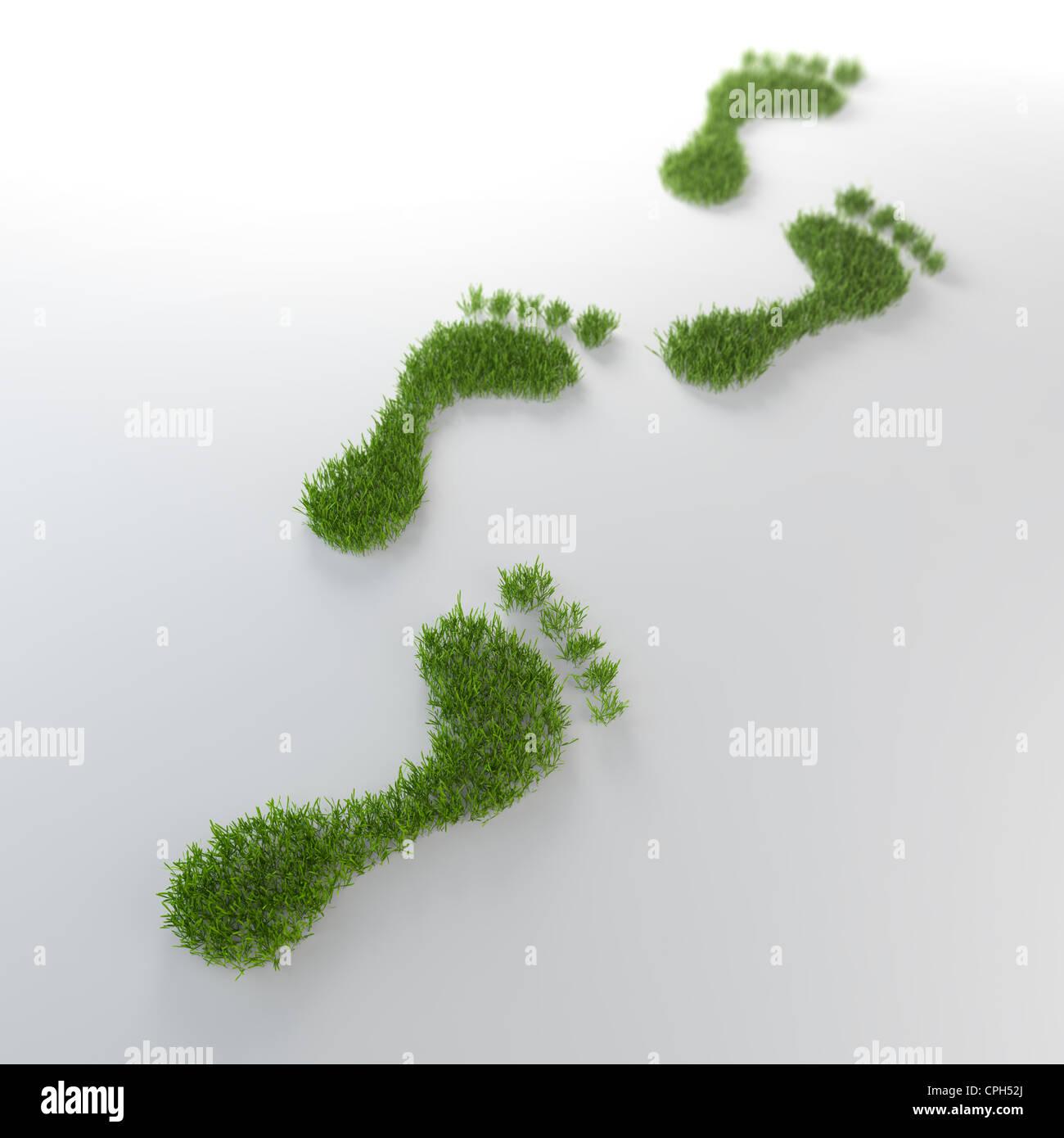 Erba footrpints environmentla - Concetto di impronta Immagini Stock
