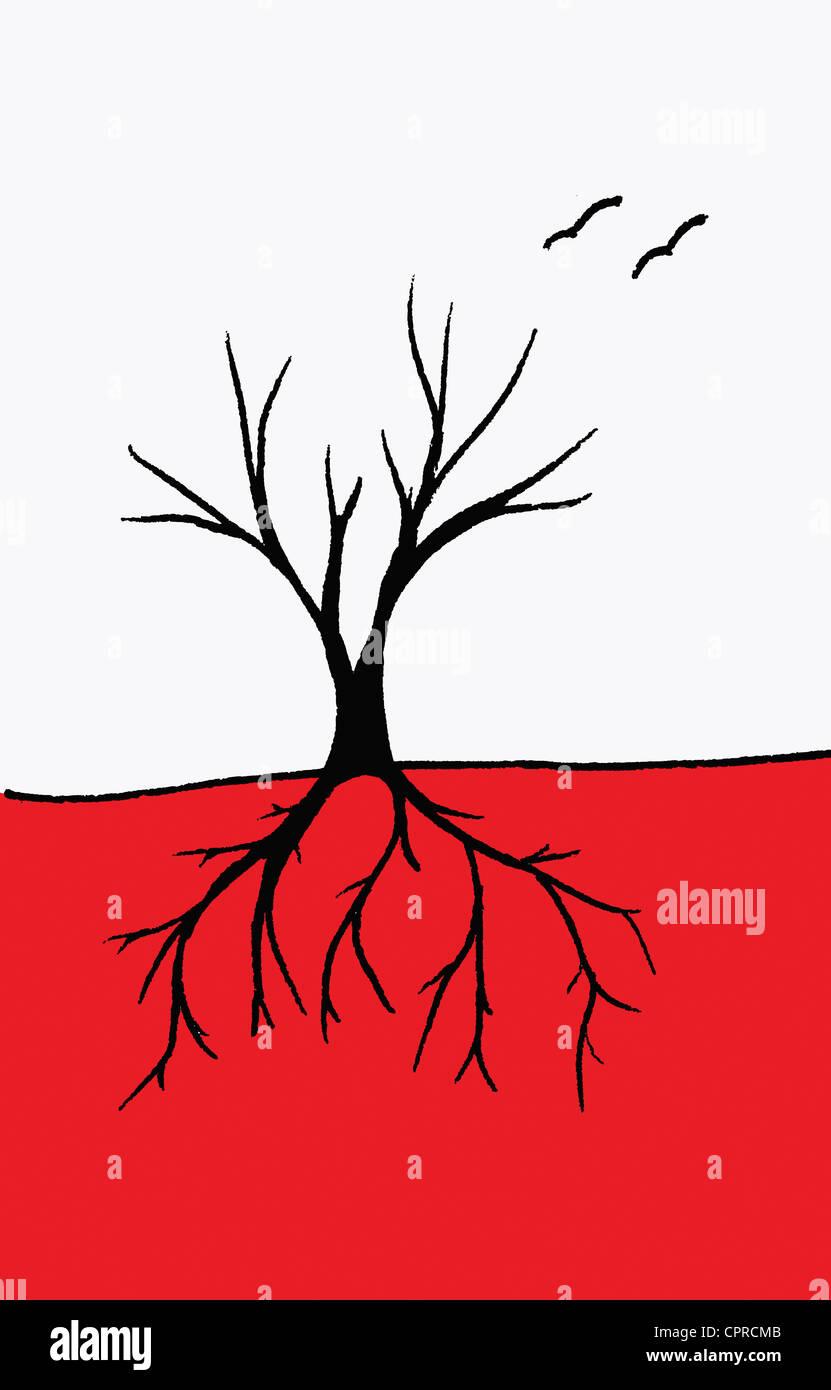 Radici e rami di alberi o di un albero con i vasi sanguigni. Immagini Stock