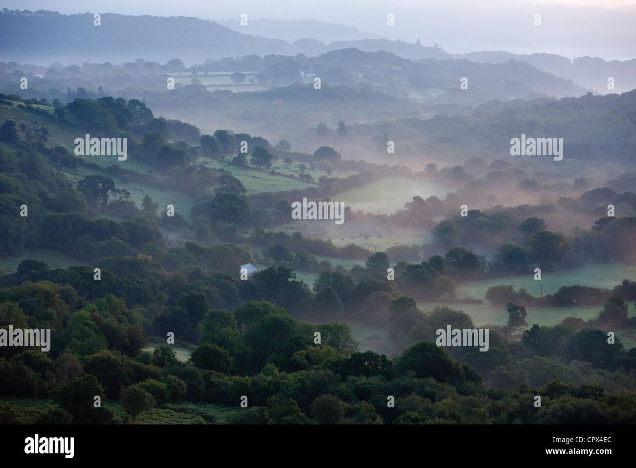 Farmland in la frangia di Dartmoor, nr Bovey Tracey, Devon, Inghilterra, Regno Unito Foto Stock