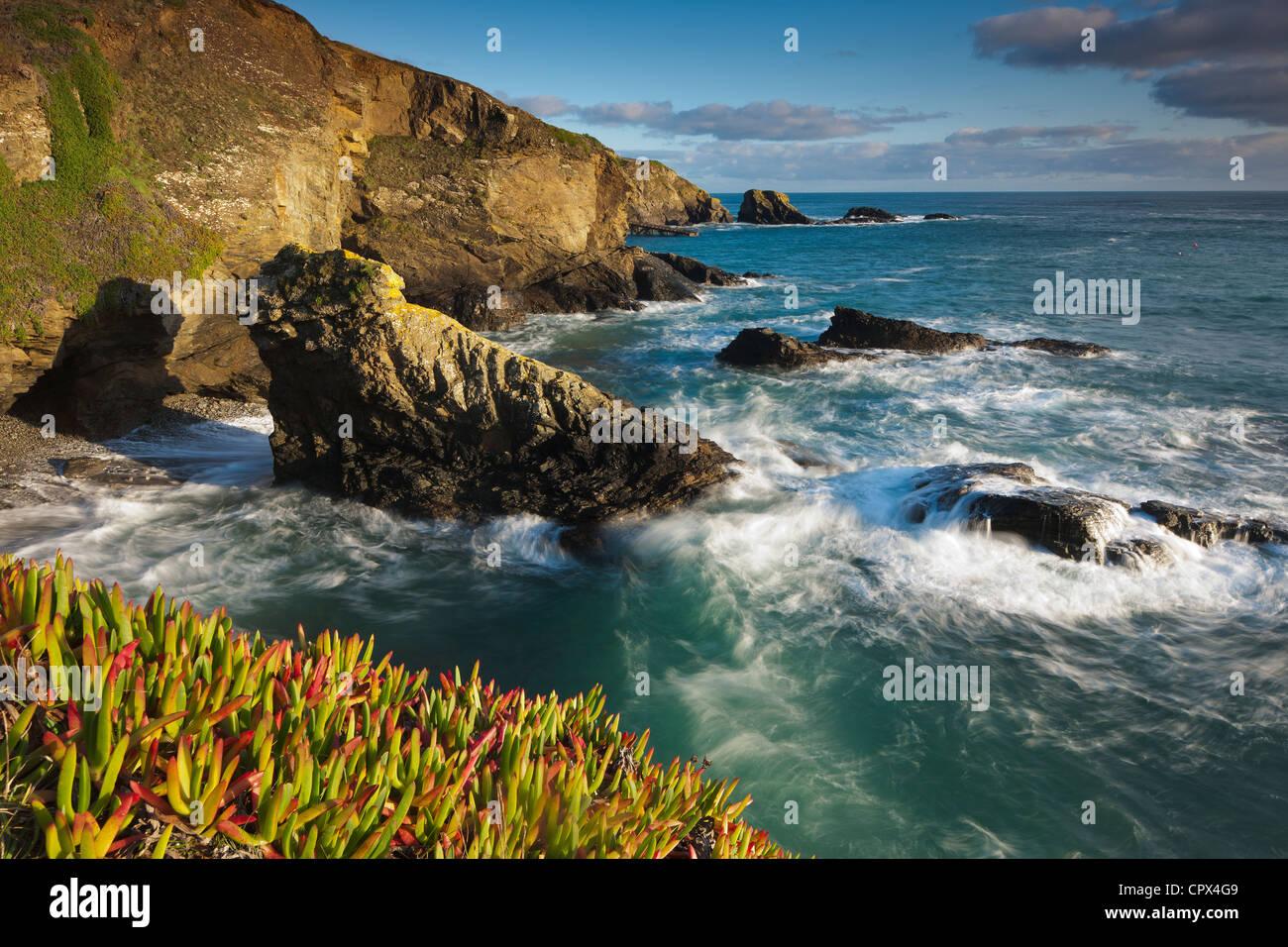 Lizard Point (punto piu' meridionale nel territorio continentale del Regno Unito), Cornwall, Inghilterra Immagini Stock