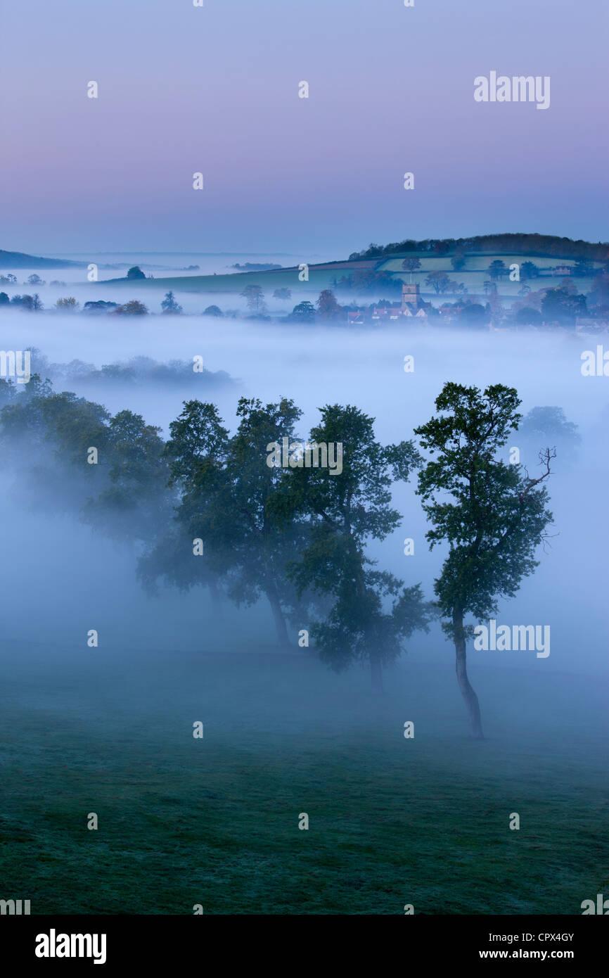 Una nebbiosa mattina autunnale, Milborne Port, sul Dorset/Confine di Somerset, Inghilterra, Regno Unito Immagini Stock