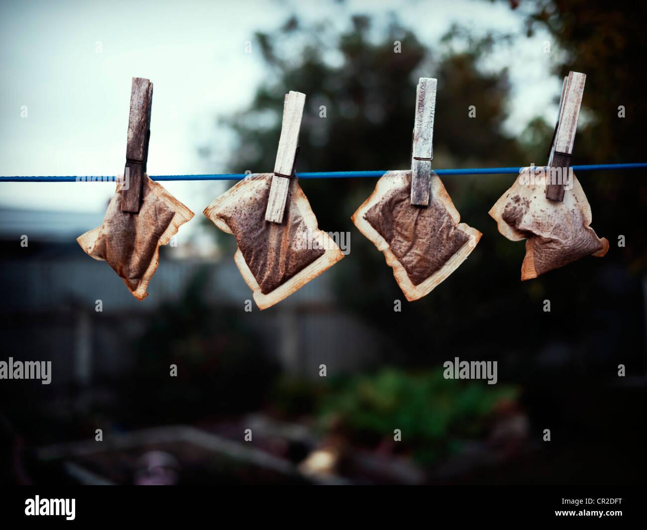 La nuova economia: essiccazione teabags sulla linea di lavaggio per il suo riutilizzo. Immagini Stock