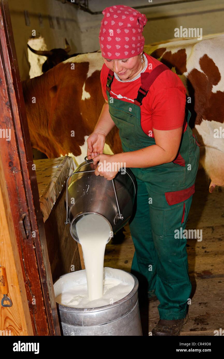 Dairy cameriera lavora con latte fresco su Halsalm, Parco Nazionale di Berchtesgaden, Hintersee, Berchtesgaden, Immagini Stock