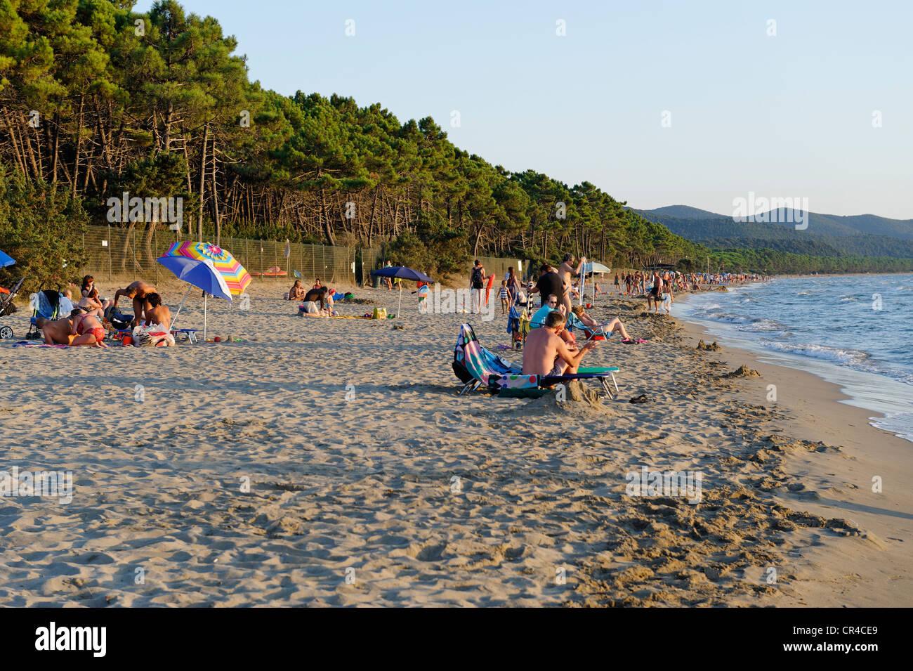 Spiaggia di Punta Ala, Mare mediterraneo, Toscana, Italia, Europa Immagini Stock