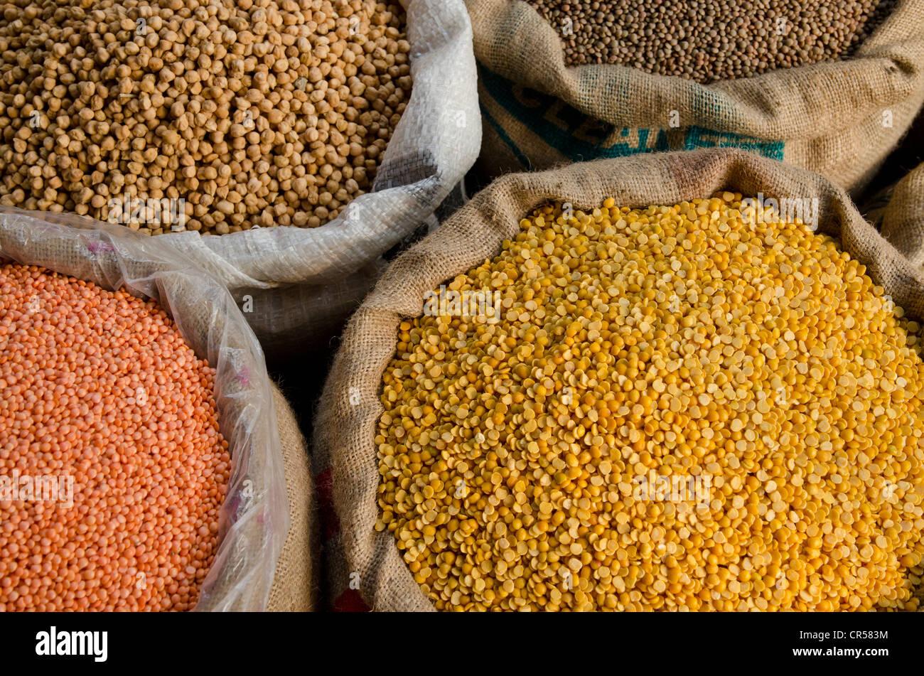 Moong Dhal, Urid Dhal e altri tipi di lenticchie per la vendita sul mercato nel sobborgo di Paharganj, Nuova Delhi, Immagini Stock