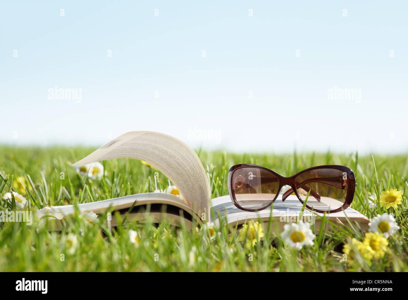 Occhiali su un libro al di fuori con erba verde Immagini Stock