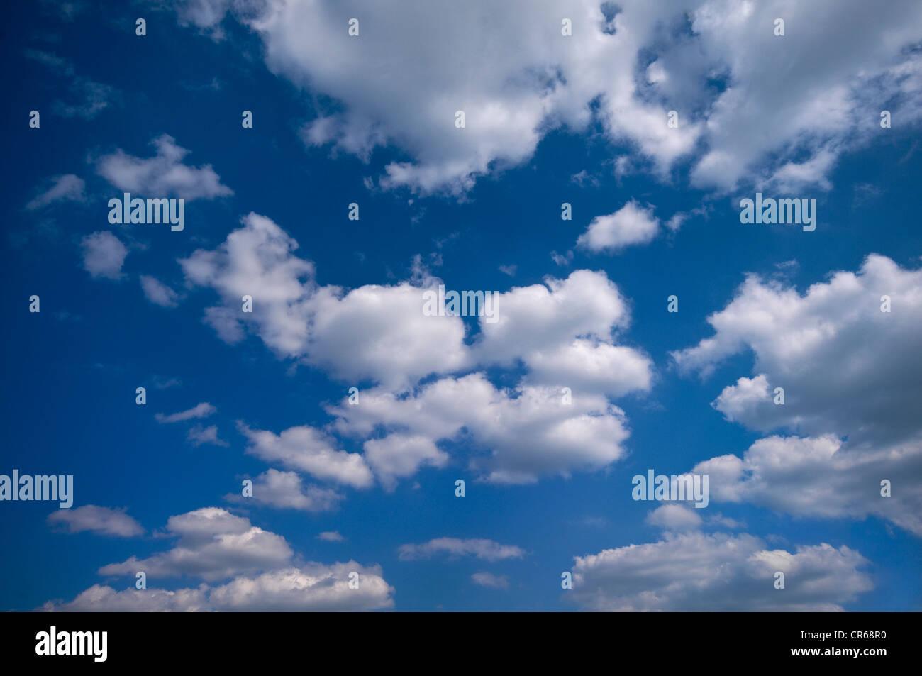 Molti cumulus nubi in un cielo blu Immagini Stock