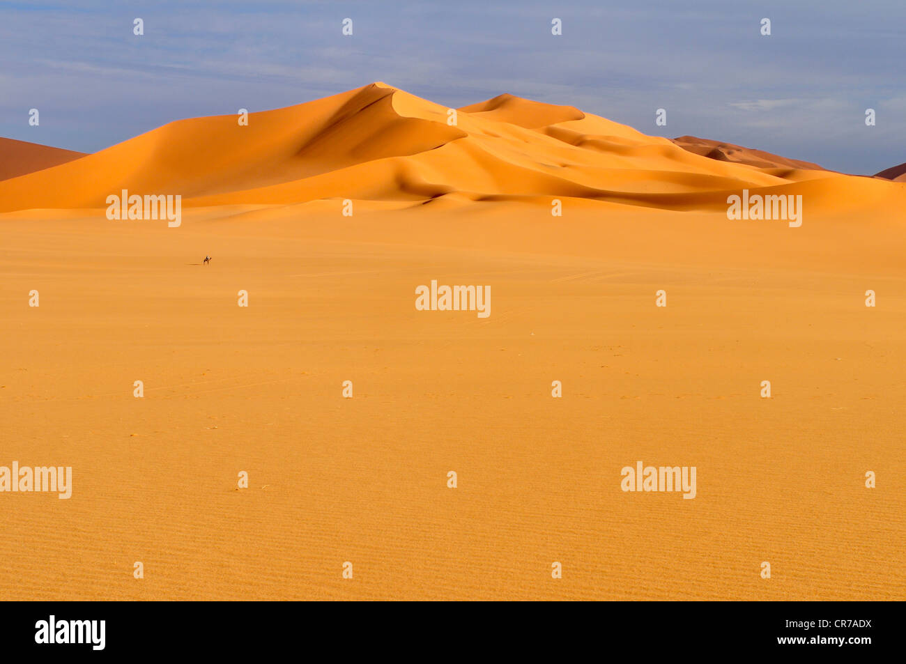 Algeria, Sahara, Vista delle dune di sabbia Immagini Stock