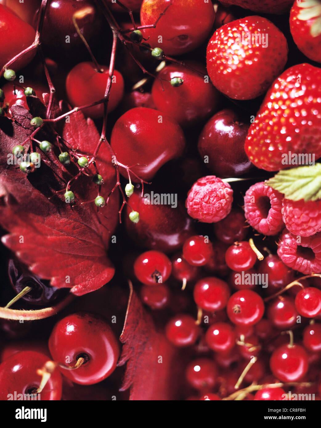 Frutti di bosco e telaio completo Immagini Stock