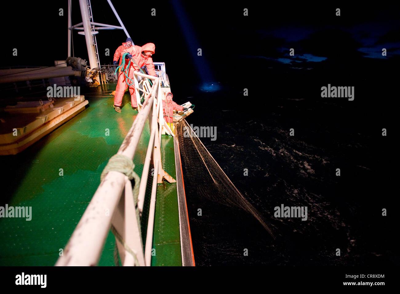 I pescatori su un lato trawler tira la net entrobordo, Breiðafjoerður, Islanda, Europa Immagini Stock