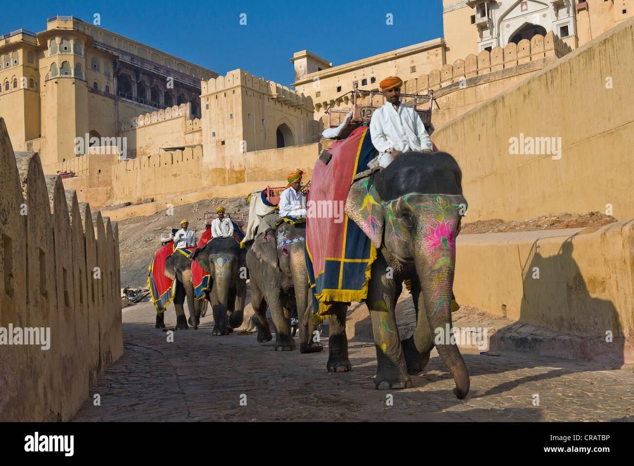 Dipinto di elefanti e mahouts, Ambra Fort, Jaipur, Rajasthan, India, Asia Foto Stock