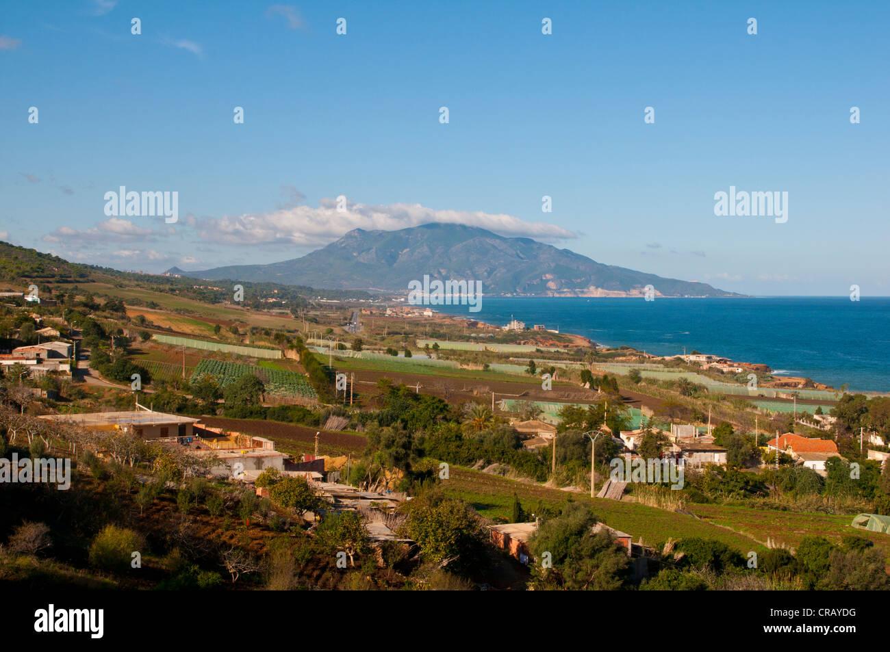 Paesaggio mediterraneo vicino a Tipasa, Algeria, Africa Immagini Stock
