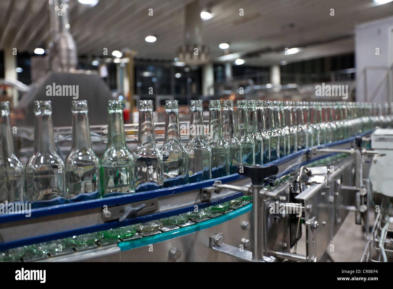 Le bottiglie da birra vuote dopo la pulizia, su di un nastro trasportatore, legame brewery, Francoforte Hesse, Germania, Immagini Stock