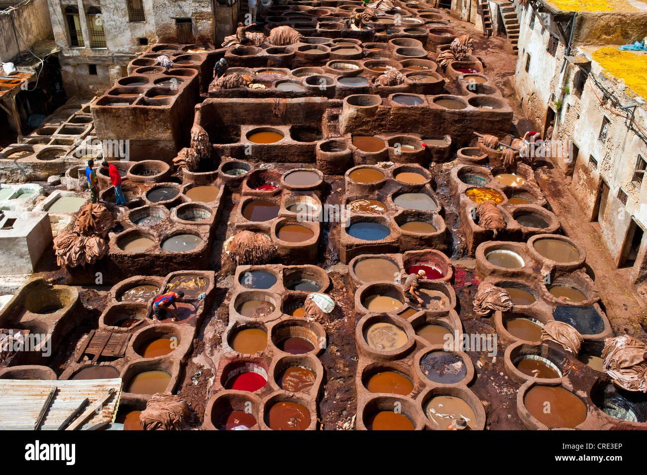 Concerie tradizionali con tini morente, città vecchia o medina di Fez o Fes, Sito Patrimonio Mondiale dell'UNESCO, Immagini Stock