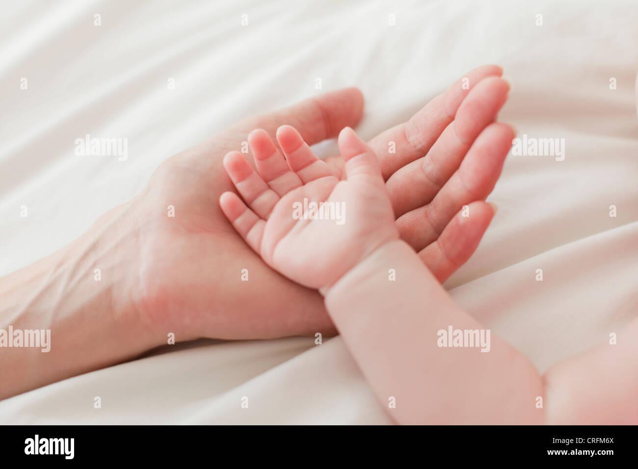 Close up della madre e del bambino le mani Immagini Stock