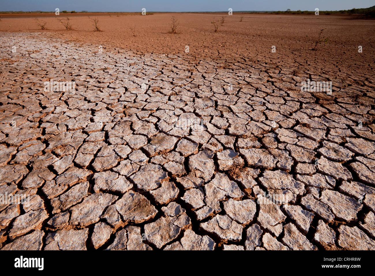 Suolo incrinato in Sarigua national park (deserto), nella provincia di Herrera, Repubblica di Panama. Immagini Stock