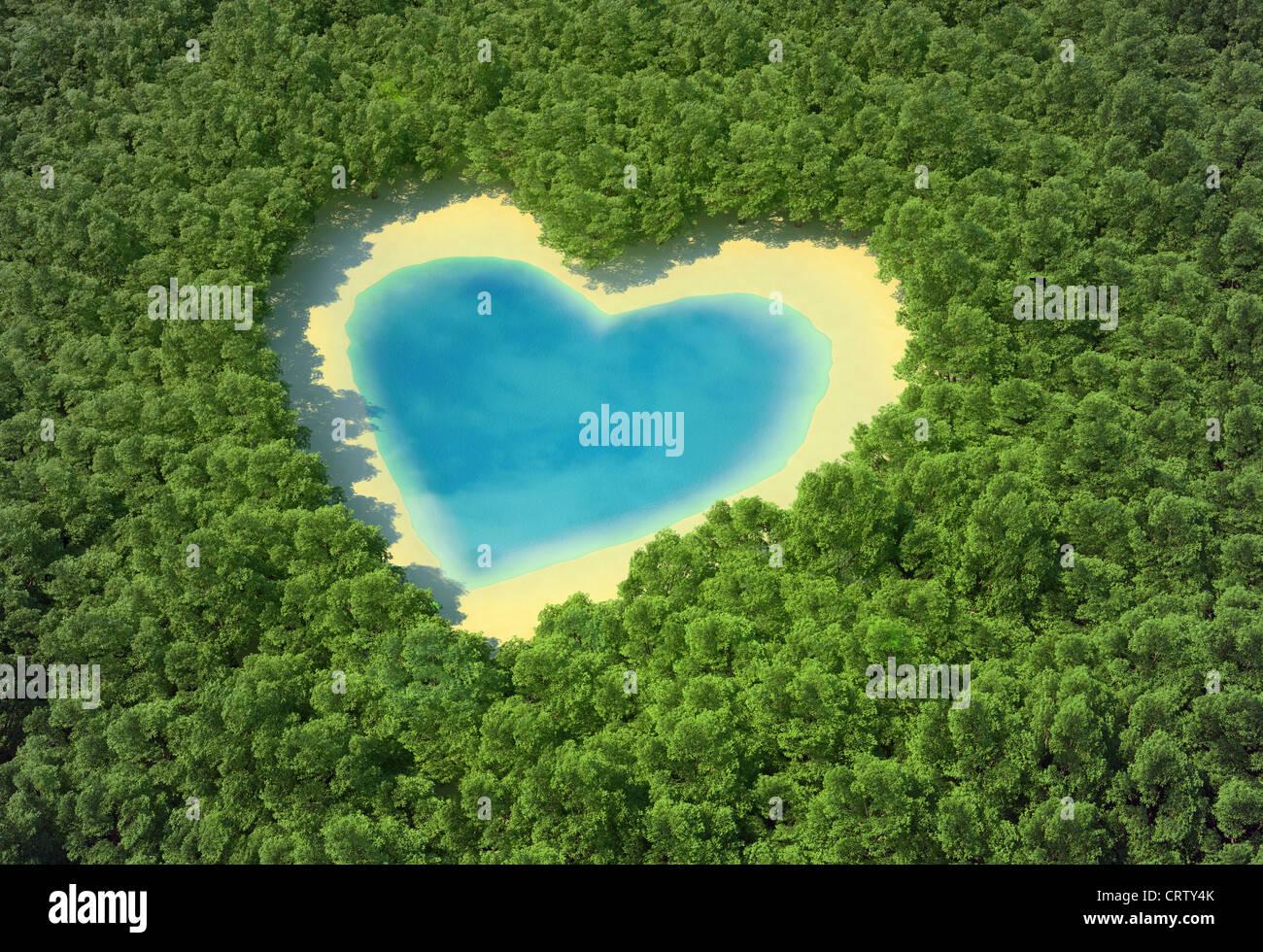A forma di cuore stagno in una foresta tropicale Foto Stock