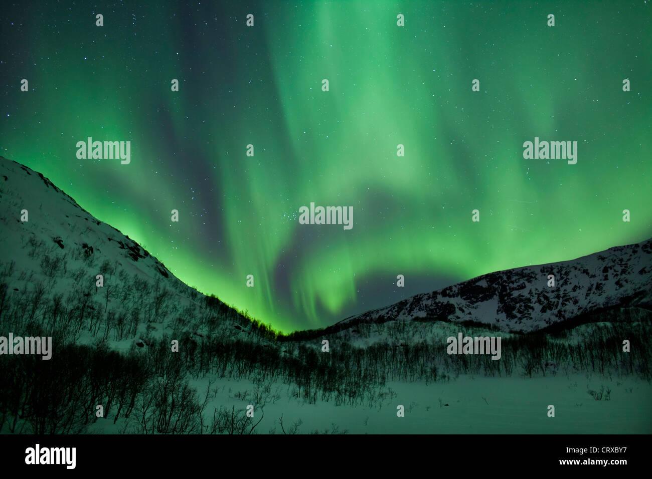 Aurora Boreale la Northern Lights riempire il cielo a Kvaloya nel Circolo Polare Artico vicino a Tromso, Norvegia Immagini Stock