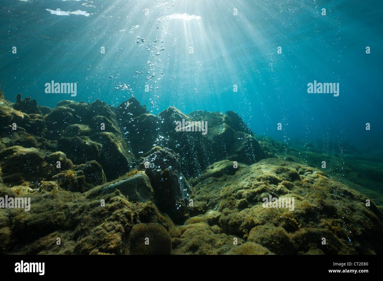 Vulcaniche di bolle di aria in spiaggia Champagne, Mar dei Caraibi, Dominica Immagini Stock