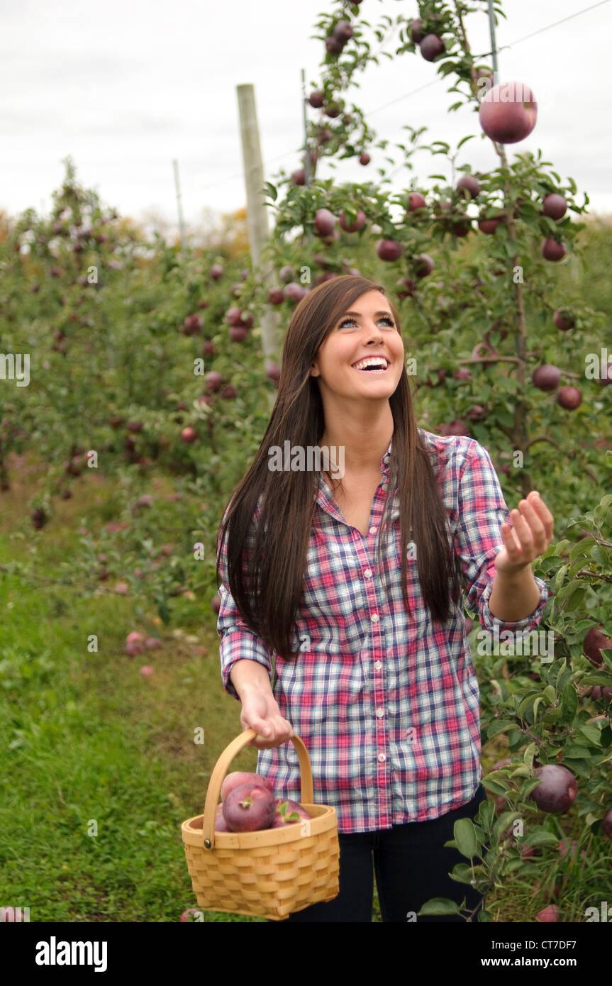 Giovane donna nel frutteto, gettando apple nell'aria Foto Stock