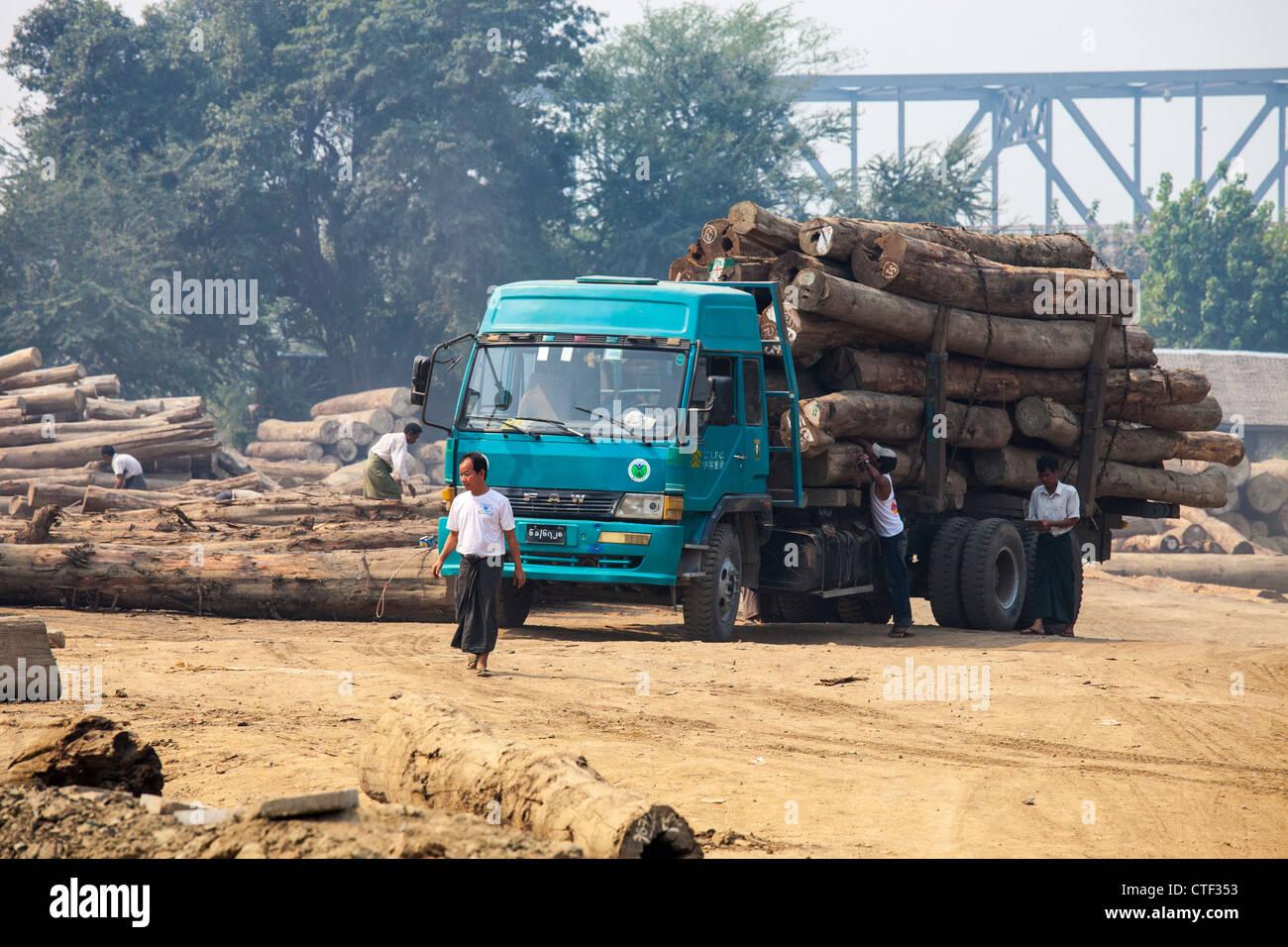 Il trasporto di log dal fiume Irrawaddy vicino a Mandalay, Myanmar Immagini Stock